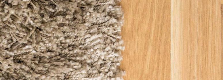 Carpet vs. Hardwood
